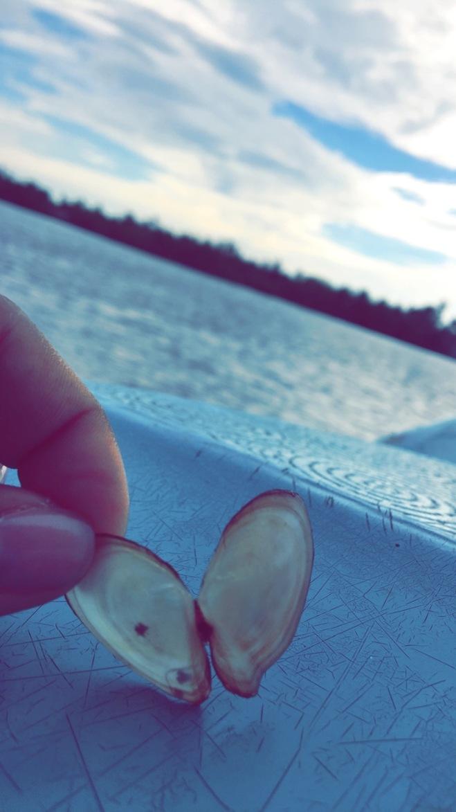Blue Lagoons Sri Lanka